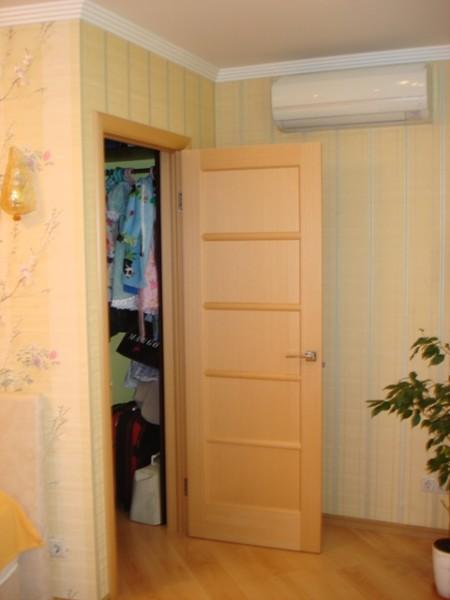 На фото типичный пример гардеробной в квартире